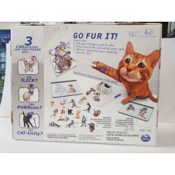 THE CAT GAME de chez SPIN MASTER (jeu en anglais)